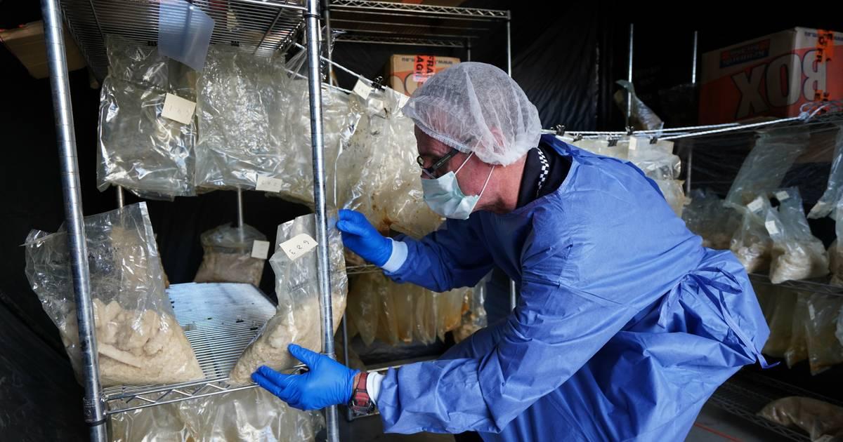 Party-Droge MDMA: 750 Kilo in Australien und Neuseeland beschlagnahmt