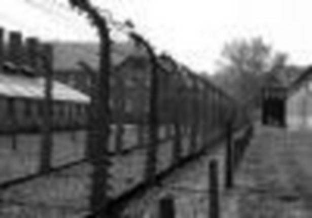 W uzasadnieniu projektu na stronie Rządowego Centrum Legislacji podkreślano, że karalność takich stwierdzeń jest obecna w dorobku prawnym Unii Europejskiej - decyzji ramowej z 2008 r. ws. zwalczania pewnych form i przejawów rasizmu i ksenofobii za pomocą środków prawnokarnych