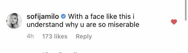Jedan od komentara Sofije Milošević