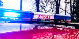 Wybuchła paczka w firmie kurierskiej w Łodzi