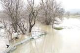Đunis 01 - Poplavljen put Kruševac - Niš - Foto N. Božović