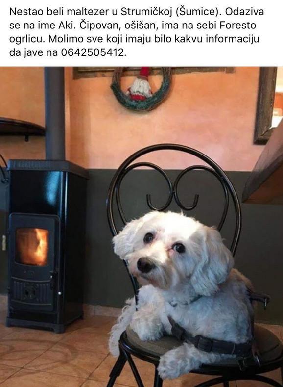 Jeste li ga videli?