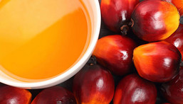 Kernel oil is different from red palm oil