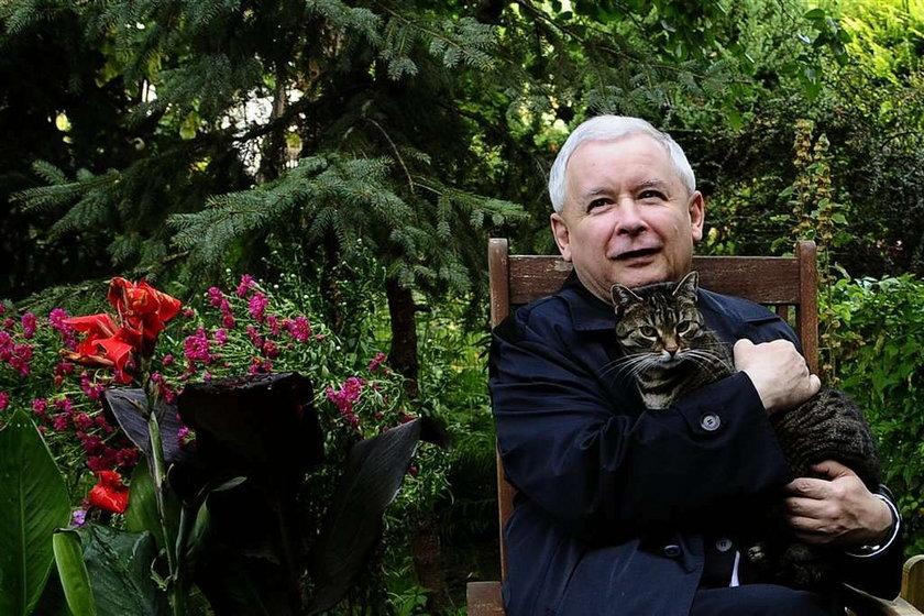 Szok! Kaczyński nie zdał z klasy do klasy! Kto uznał mu maturę?!