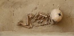Szkielety dzieci na polu. Szokujące odkrycie na Lubelszczyźnie
