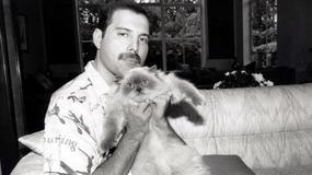 """Muzycy Queen w kinowej biografii """"Bohemian Rhapsody"""" obsadzeni"""