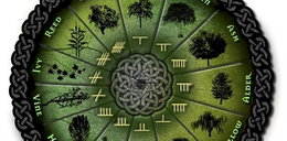 Horoskop celtycki. Sprawdź, jakim drzewem jesteś