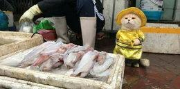 Najsłodszy sprzedawca ryb na świecie. Pokochacie go od pierwszego wejrzenia!