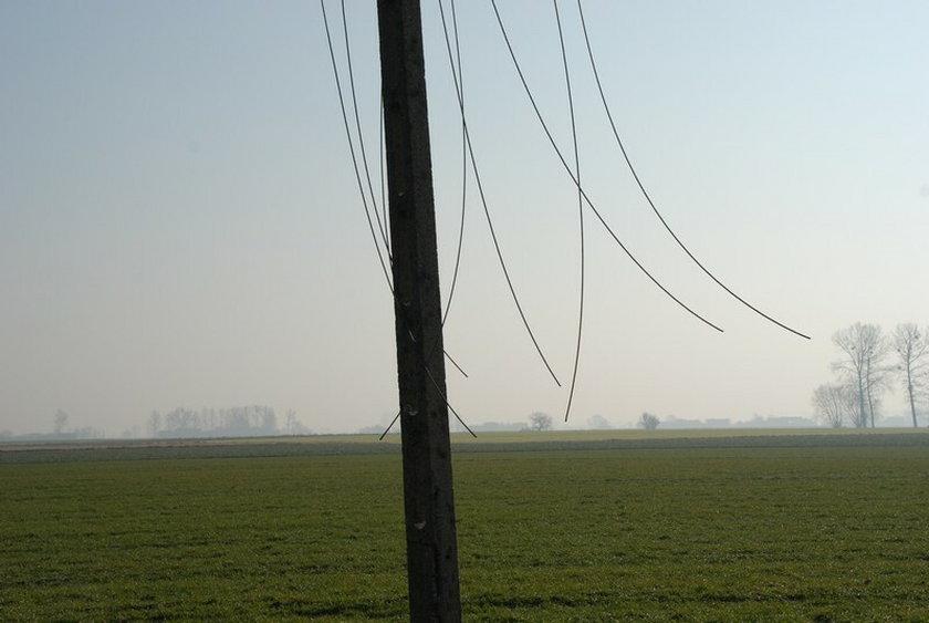 Kradli linie energetyczne