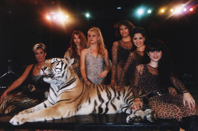 Žene i mačke Dok Antala