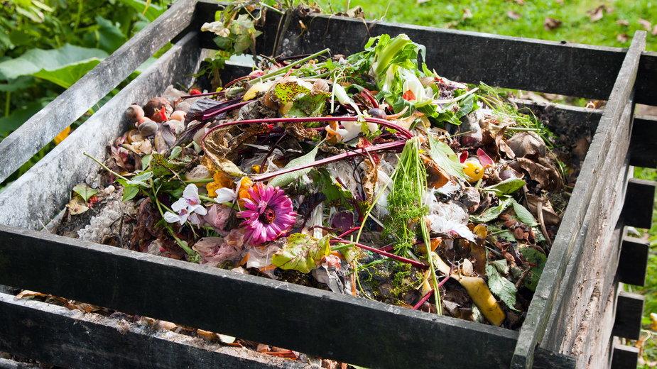 Dzięki kompostowaniu można pozyskać bardzo dobry nawóz - airborne77/stock.adobe.com