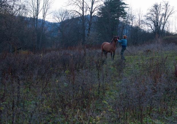 Witek Smoleński mieszka w Seredniem Małym, wsi, w której ma dom tylko jedna rodzina - jego. Witek prowadzi hodowlę metodą tabunową - jego hucuły przez cały rok są na świeżym powietrzu. Półdzikie są silne, odporne i odważne.