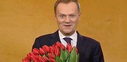 Premier gładki daje kwiatki