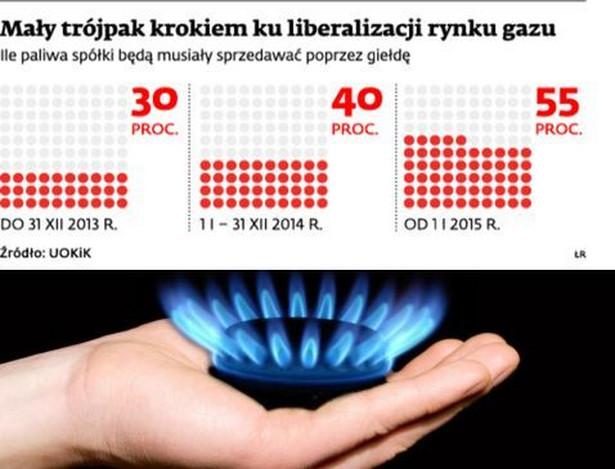 Mały trój pak krokiem ku liberalizacji rynku gazu