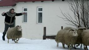 """""""Barany. Islandzka opowieść"""" na DVD: z rodziną najlepiej na zdjęciach"""