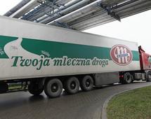 Spółdzielnia Mleczarska Mlekowita jest Liderem polskiego mleczarstwa oraz największym eksporterem produktów mleczarskich w Polsce
