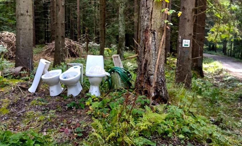 Ktoś porzucił sedesy w Górach Stołowych.