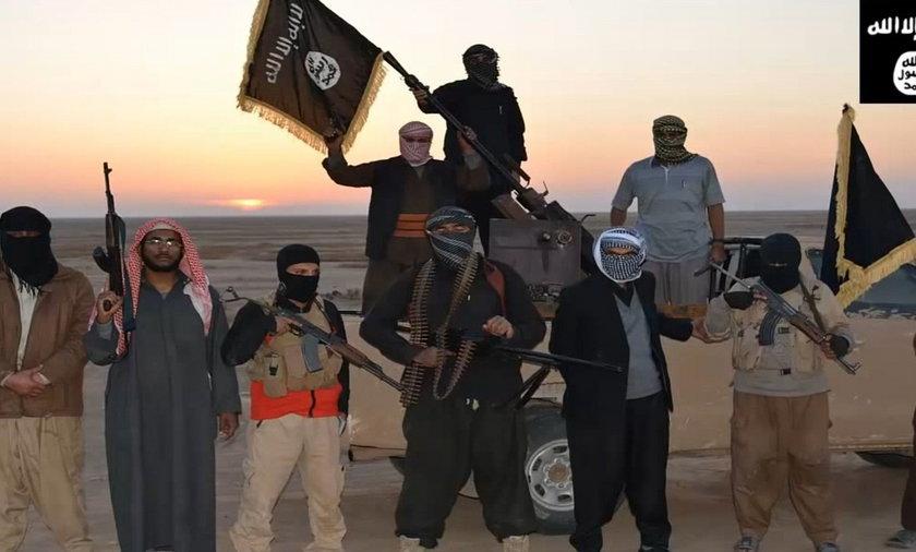 Al Kaida podbija Irak