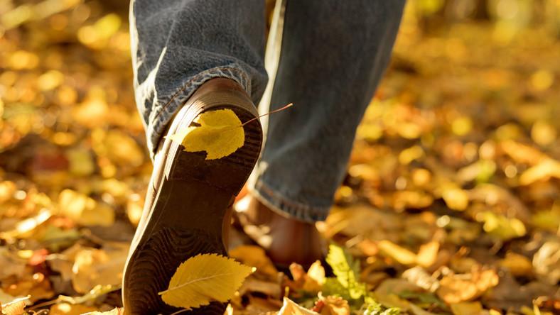 Spacer jesienią