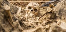 Badania przedłużone. Archeolodzy zostają na Placu Kolegiackim