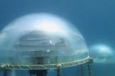 podvodna farma, nemov vrt