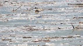 """""""Jezioro zamieniło się w wysypisko śmieci"""". Zatrważający widok kąpieliska"""