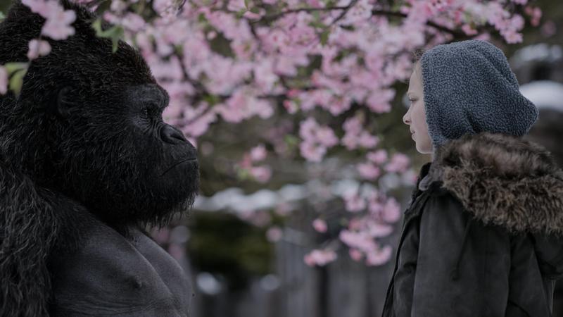 """""""Wojna o planetę małp' - kadr z filmu"""