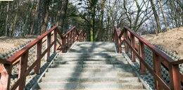 Są już nowe schody na Pachołek!