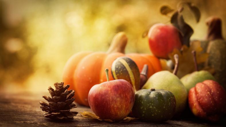 Zapomniane owoce, czyli dzikie skarby jesieni