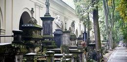Policzyli groby na Powązkach