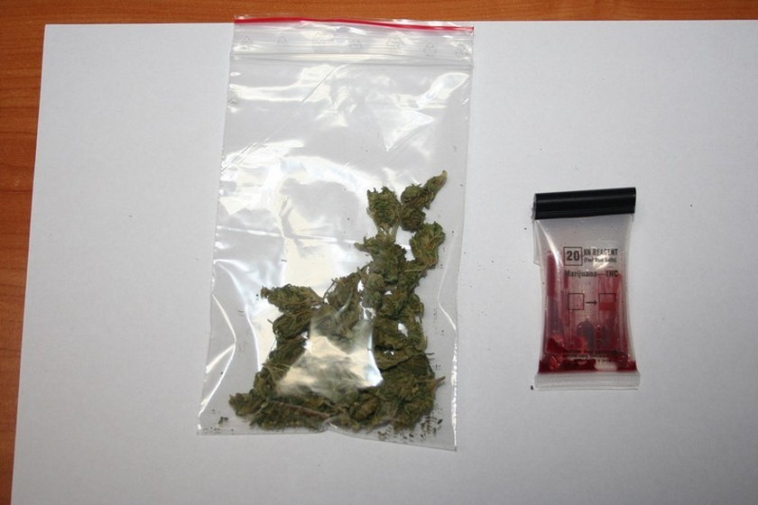Nastolatek wpadł z narkotykami... w lesie