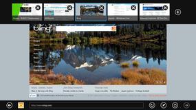 Internet Explorer również podatny na sztuczki Google?