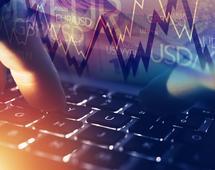 Po wczorajszych doniesieniach nt. XTB, kurs spółki na GPW runął o ponad 40 proc.