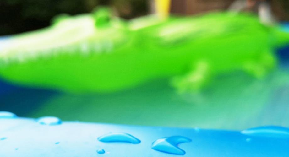 Budget-Pool statt Biotop: So bleibt der Pool lange sauber