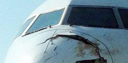 O krok od katastrofy. Samolot wleciał w stado bocianów!