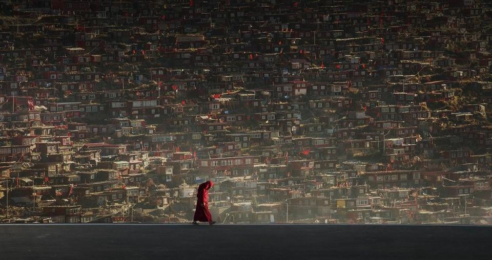 """Wyróżnienie: """"Piechur"""", fot. Xiaolu Tu"""