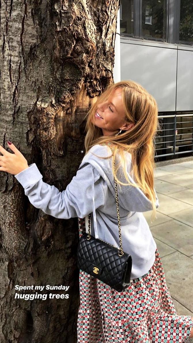 Lekovita moć drveća