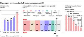 Rynek AGD w Polsce mocno rośnie. Sprawdź, kto zyskał najwięcej