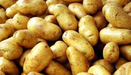 Health benefits of Irish potatoes.