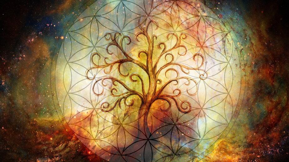 Symbol Drzewa Życia (ilustracyjne)