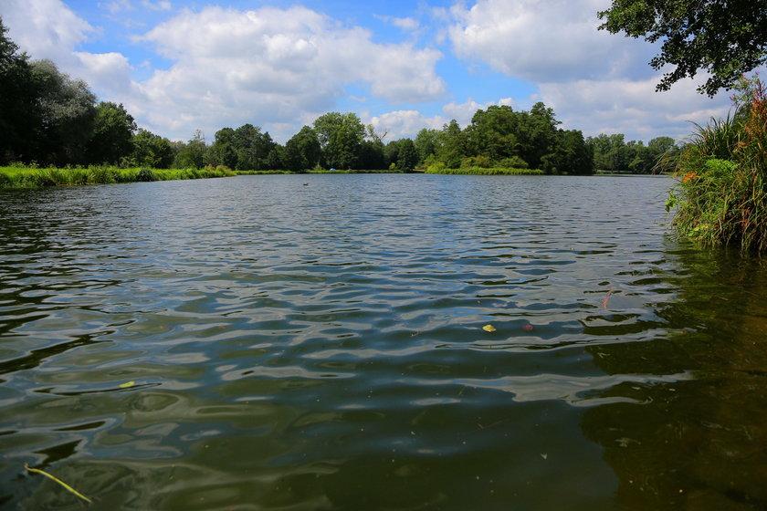 Kąpielisko na Stawach Stefanowskiego będzie znowu otwarte