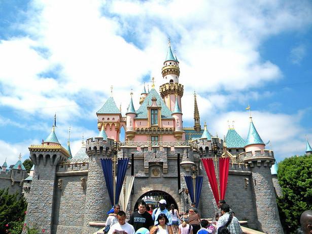 Disneyland The Walt Disney Company to jeden z największych koncernów mediowych globu. Kreacje Disneya takie jak Myszka Miki, Pluto, Kaczor Donald czy Kubuś Puchatek stały się już kultowe i znane na całym świecie. Oczarowanie widza to jednak nie to samo, co oczarowanie go w parku rozrywki. Pierwszy Disneyland powstał niemal 60 lat temu w Kaliforni. Po sukcesie pierwszego powstały kolejne. Po jednym w USA, Tokio i Paryżu. To, co jednak bawiło wiele dekad temu, niekoniecznie zadowala dzisiejszych turystów.
