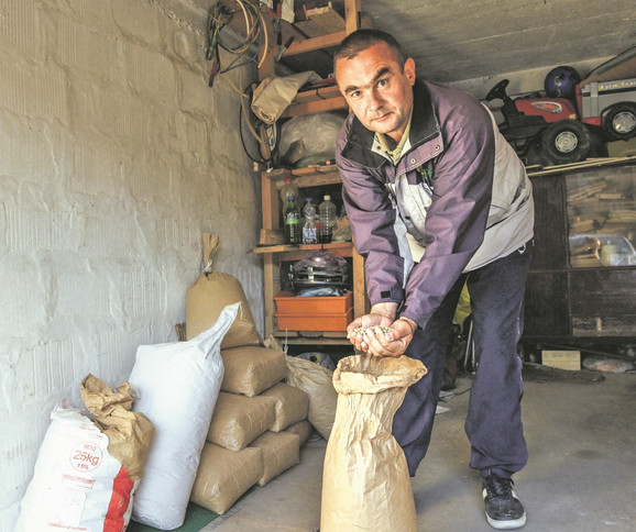 Ako se vodi računa o prinosu i agrotehnici, može da se ostvari dobra zarada: Željko Pandurović