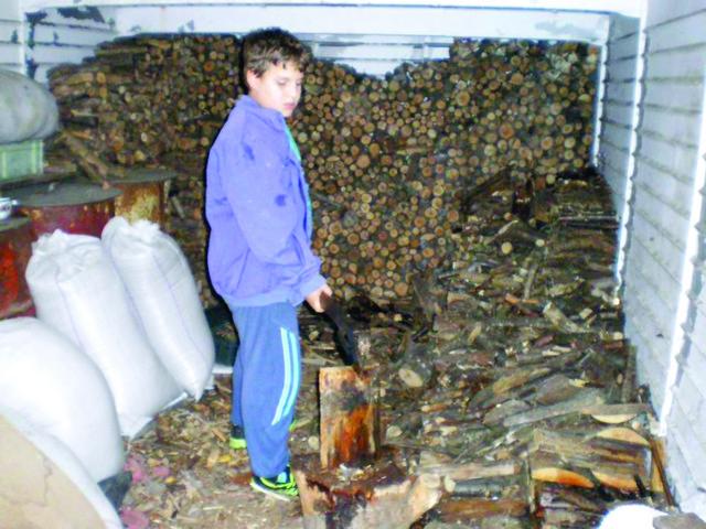 Svakog jutra dok Željko nacepa drva i naloži šporet...