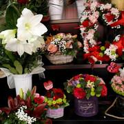 Široka ponuda cvetnih aranžmana u cvećarama