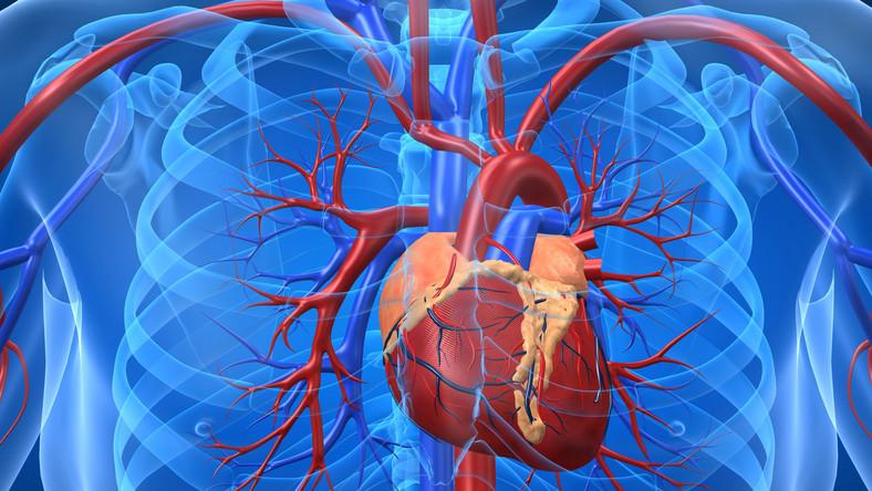 Nowe leki na serce ochronią przed udarem
