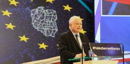 Najnowszy sondaż. PiS wygra Europę?