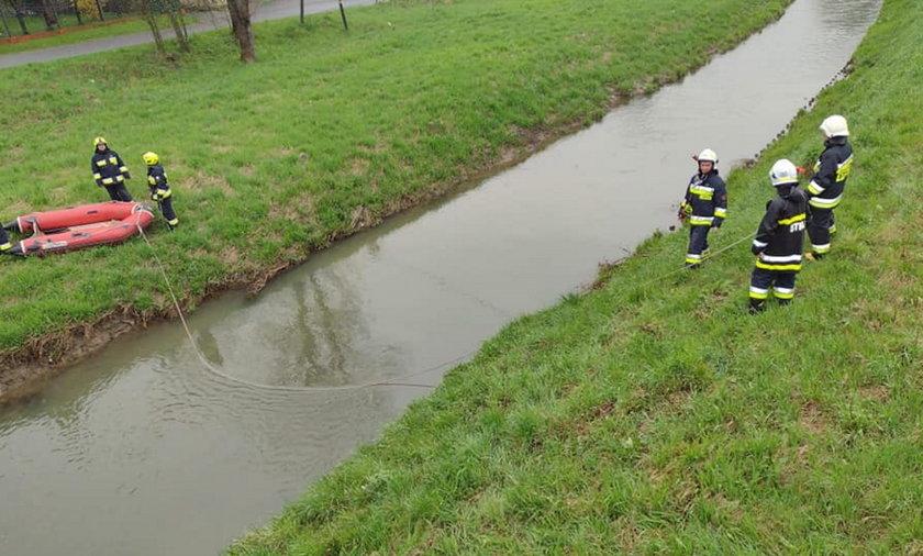 Dopiero w miejscu gdzie rzeka nieco się uspokoiła, udało się wydostać mężczyznę na brzeg.