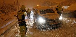 Śnieżyca sparaliżowała Hiszpanię. Psie zaprzęgi na ulicach! WIDEO