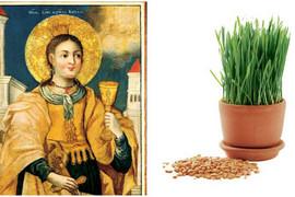Danas je Sveta Varvara, dan kada treba da posejete BOŽIĆNU PŠENICU i obavezno skuvate OVO JELO. Za to postoji VAŽAN RAZLOG
